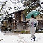 Winter Nara , Ryokan (Small Hotel)2 , JAPAN by yoshiaki nagashima