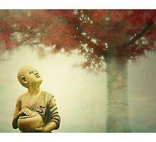 Buddha Statue Tree Photographic Print