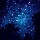 Milky Way by Stephanie Sherman