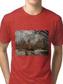 Higher Education Tri-blend T-Shirt