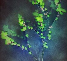Branches by smoothstones