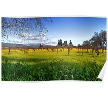 Ethereal Vineyard HDR Poster