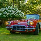 My 1960 Corvette by kenmo