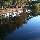 Wimmera River by Andrew Cowell