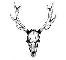 Deer dots tattoo  Photographic Print