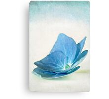 Ocean Blue 2 Canvas Print