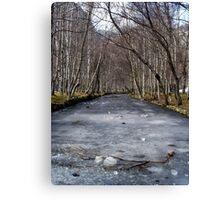 Frozen River Canvas Print