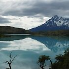 Torres del Paine - Chile(3) by fraukevelghe