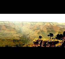 Grand Canyon, USA by fraukevelghe