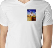 Link to the Past Mens V-Neck T-Shirt