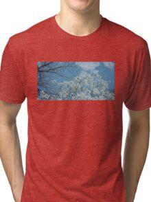 Springtime Magnolias Tri-blend T-Shirt
