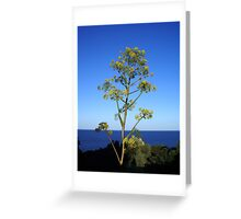 Agave flower  Greeting Card