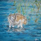 Wolf in the Lake by Jennifer Ingram