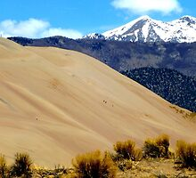 Great Sand Dunes National Park by NordicBuckeye