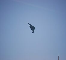 Chicago Air Show -- Stealth Fighter by zwrr16