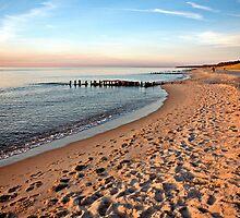 MVP57 Darss West Beach, Baltic, Germany. by David A. L. Davies
