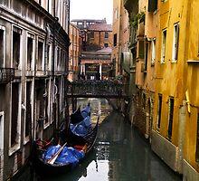 Venice Canal by Katelyn Rew