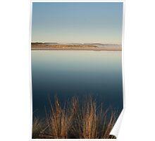 Reeds  -  Wilson Inlet Poster