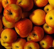 Winter Apples by RC deWinter