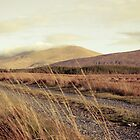 Bog road in West of Ireland by Ciaran  Duignan