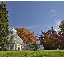 Tacoma, Wright Park Arboretum Photographic Print