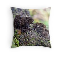 Black Jelly Oyster Throw Pillow