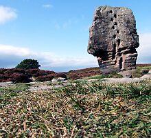 Cork Stone by Paul  Green