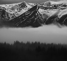 Southern Alps by Paul McSherry