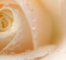 Love Me  by redredlea