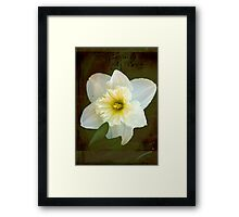 Springs Beauty © Framed Print