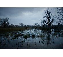 Untitled 6 Photographic Print