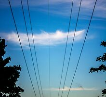 Electricity by Andrew Pounder