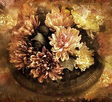 Bordered Mums by Jessica Jenney