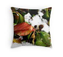 A Touch Of Fall In Winter Throw Pillow