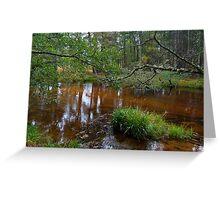 Glenmore Forest Aviemore Scotland UK Greeting Card