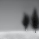 """two TREES"" by grsphoto"