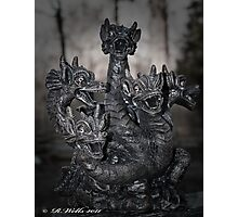 Magic Dragon Photographic Print