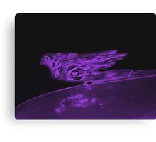 Winged Woman Canvas Print