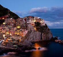 Manarola, Cinque Terre, Italia by Terry Scussel