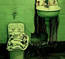 Destroyed the Bathroom by Peter Klemek
