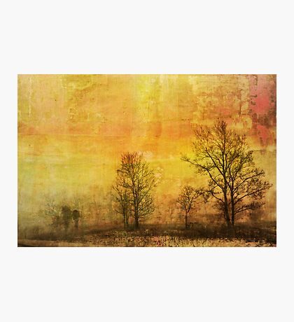 Wishful Thinking Photographic Print