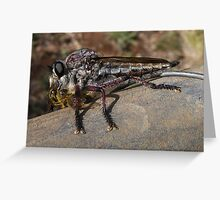 Robber Fly 1 Greeting Card