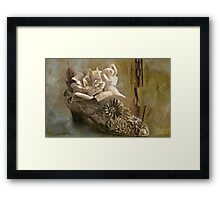 """The Gentlewoman's Shoe ..."" Framed Print"