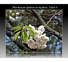 Thou hast put gladness in my heart: Psalm 4 Photographic Print