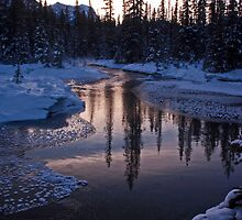 Vermillion Pass Reflections by Coniferous