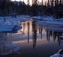 Vermillion Pass Reflections by Coniferous