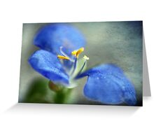 Blue Whisper Greeting Card