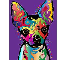 Chihuahua Art Photographic Print