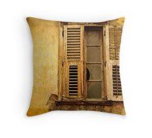 Urban Decay Throw Pillow