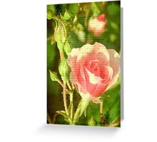 Beauty © Greeting Card